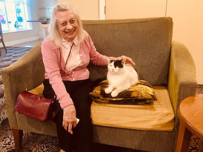 Elderly lady stroking her pet cat.